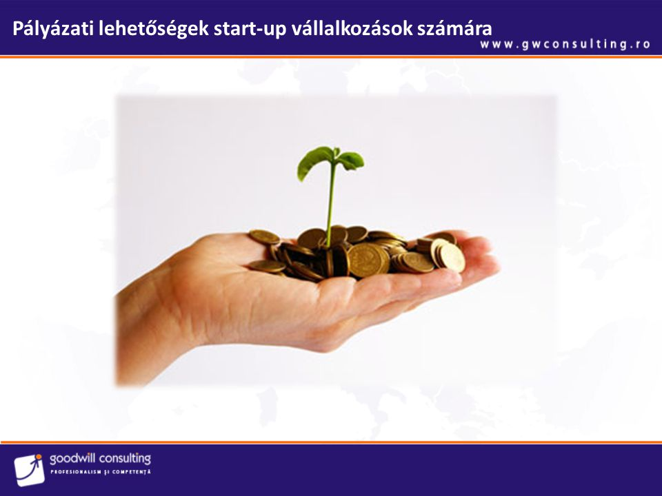 Pályázati lehetőségek start-up vállalkozások számára