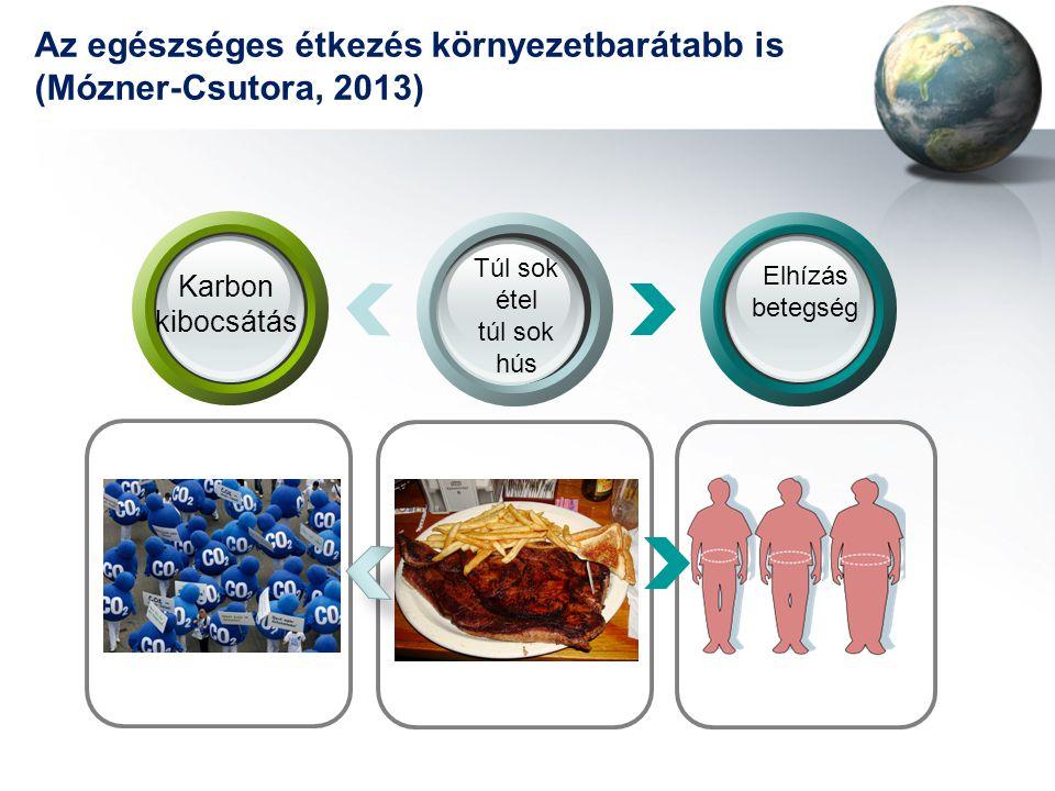 Az egészséges étkezés környezetbarátabb is (Mózner-Csutora, 2013)