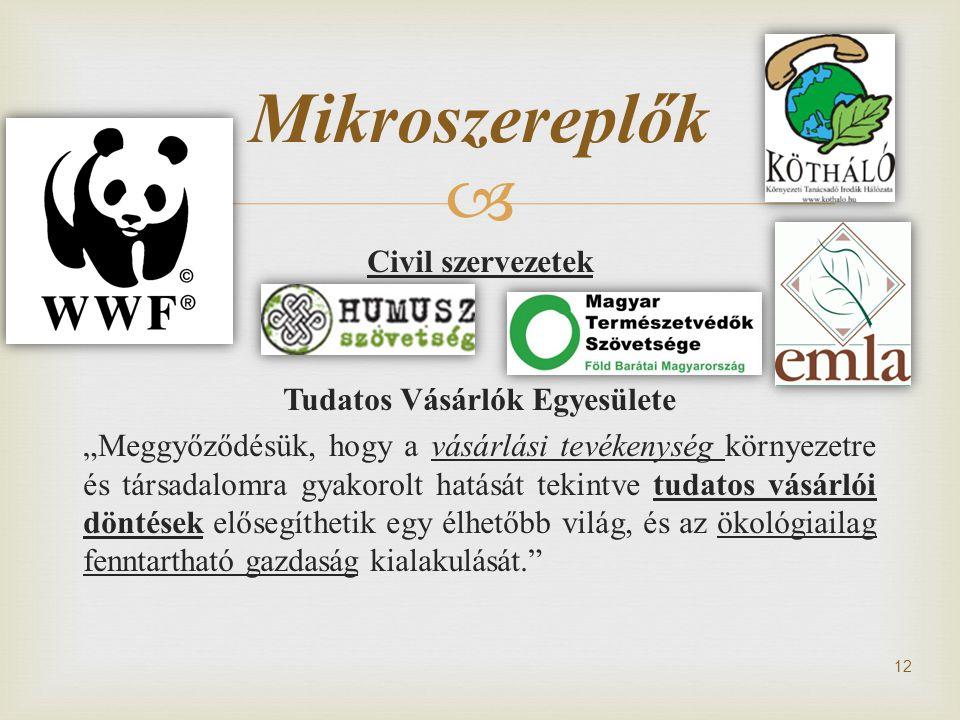 Mikroszereplők