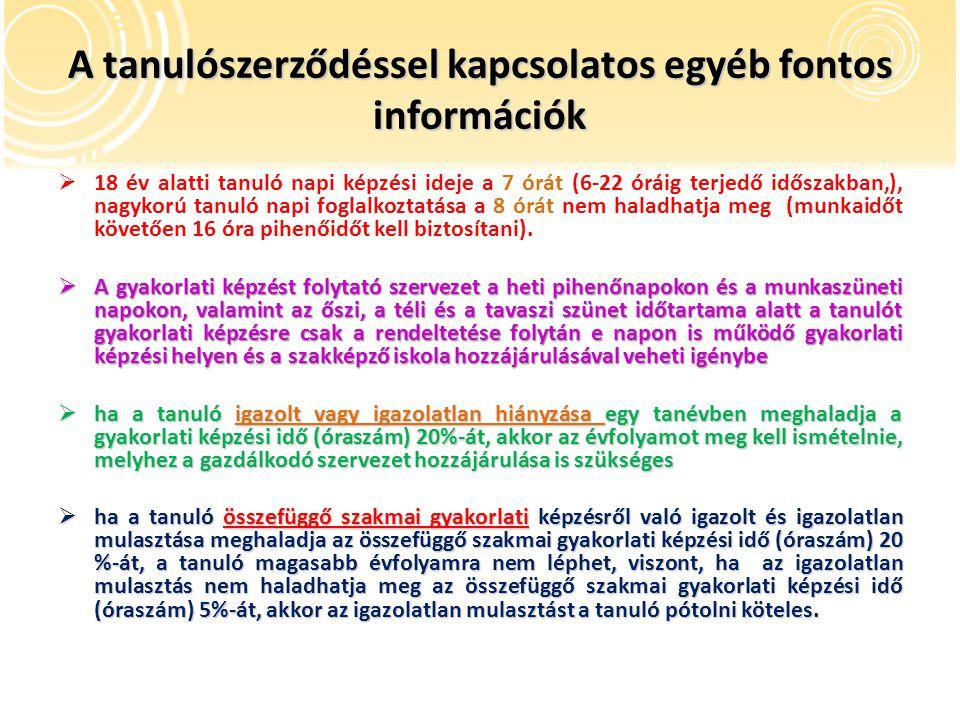 A tanulószerződéssel kapcsolatos egyéb fontos információk