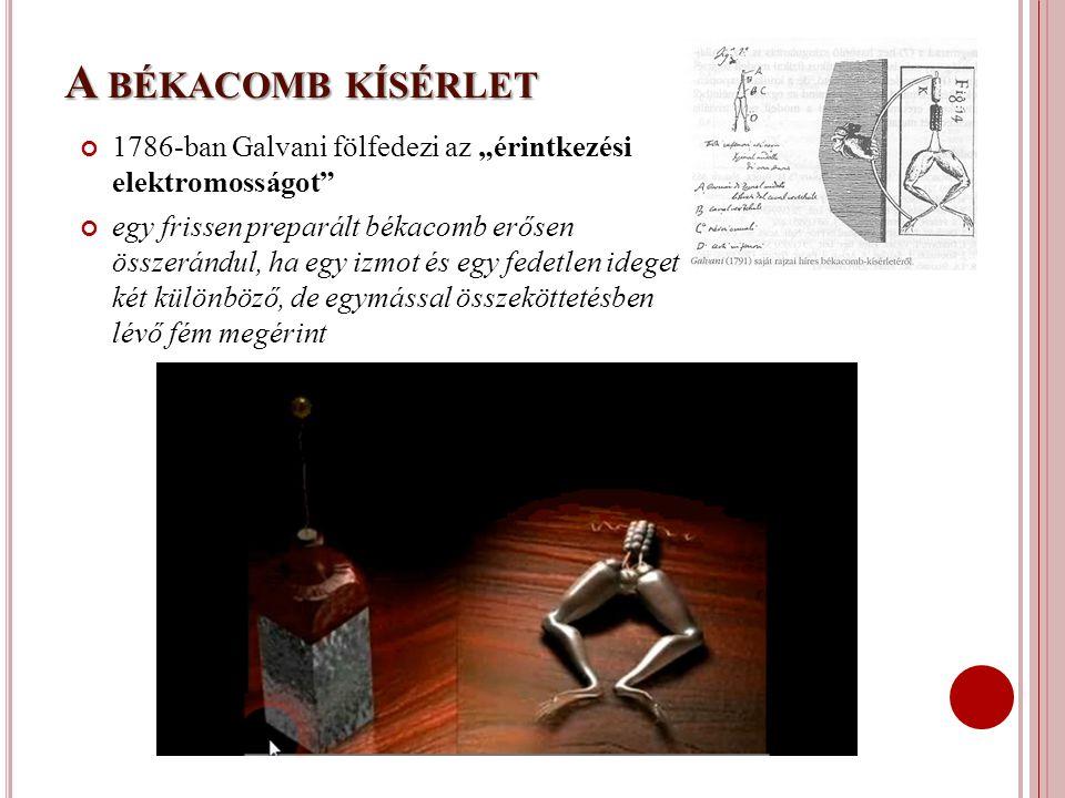 """A békacomb kísérlet 1786-ban Galvani fölfedezi az """"érintkezési elektromosságot"""