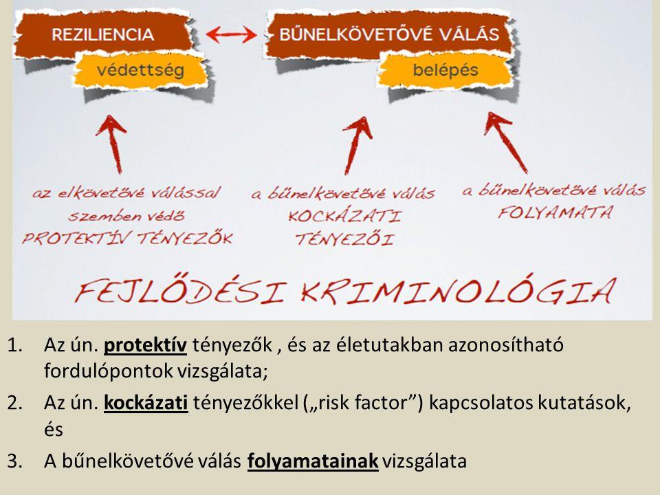 """Az ún. kockázati tényezőkkel (""""risk factor ) kapcsolatos kutatások, és"""