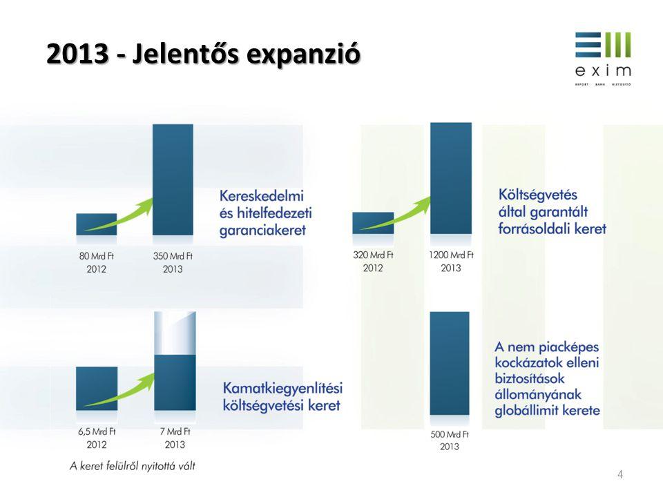 2013 - Jelentős expanzió