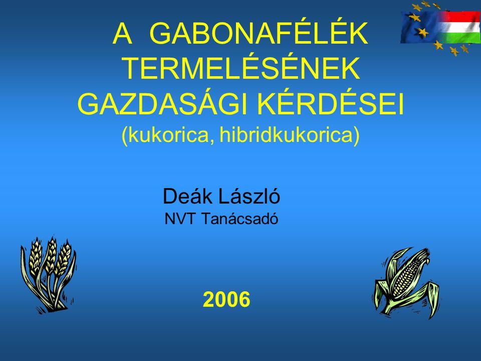 Deák László NVT Tanácsadó
