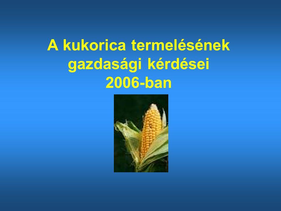 A kukorica termelésének gazdasági kérdései 2006-ban