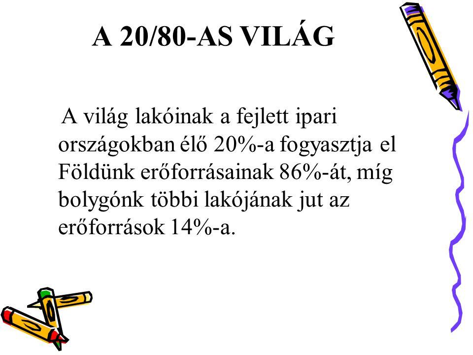 A 20/80-AS VILÁG