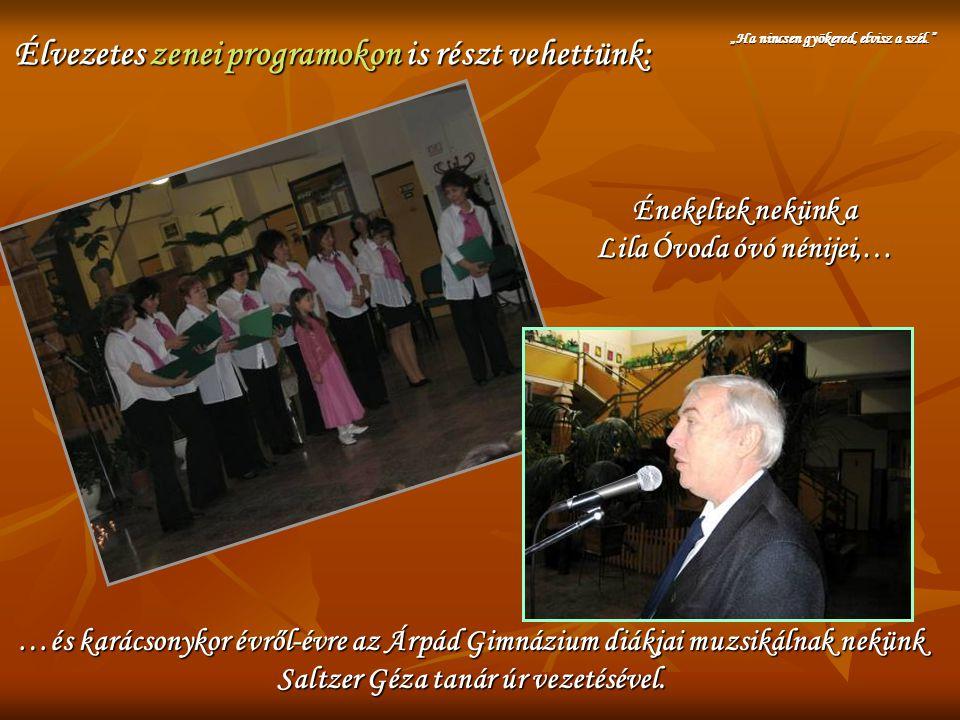Élvezetes zenei programokon is részt vehettünk: