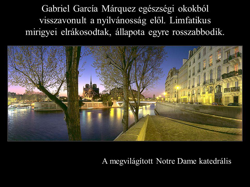 Gabriel García Márquez egészségi okokból visszavonult a nyilvánosság elől. Limfatikus mirigyei elrákosodtak, állapota egyre rosszabbodik.