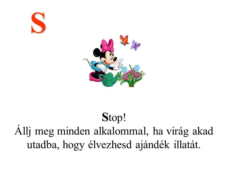 S Stop! Állj meg minden alkalommal, ha virág akad utadba, hogy élvezhesd ajándék illatát.
