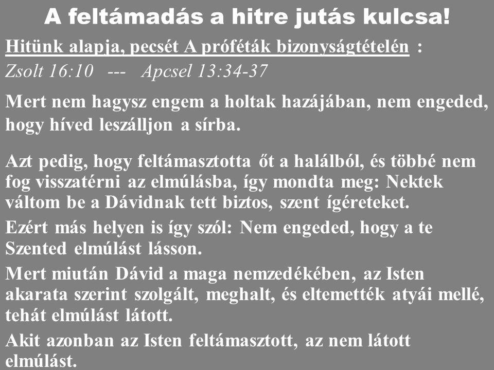 A feltámadás a hitre jutás kulcsa!