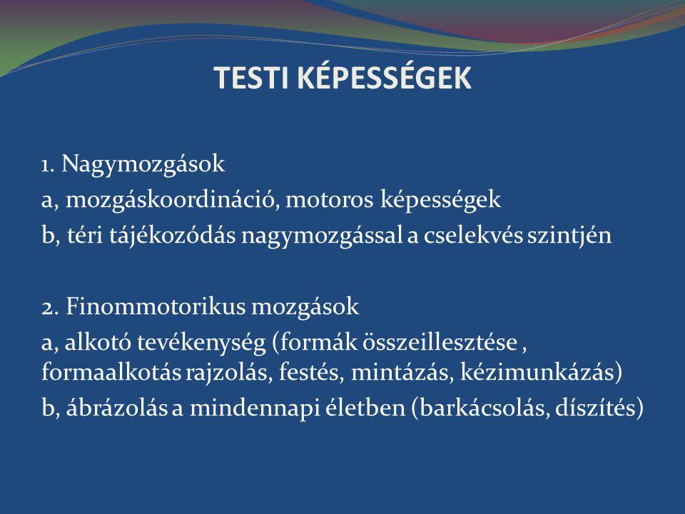 TESTI KÉPESSÉGEK 1. Nagymozgások