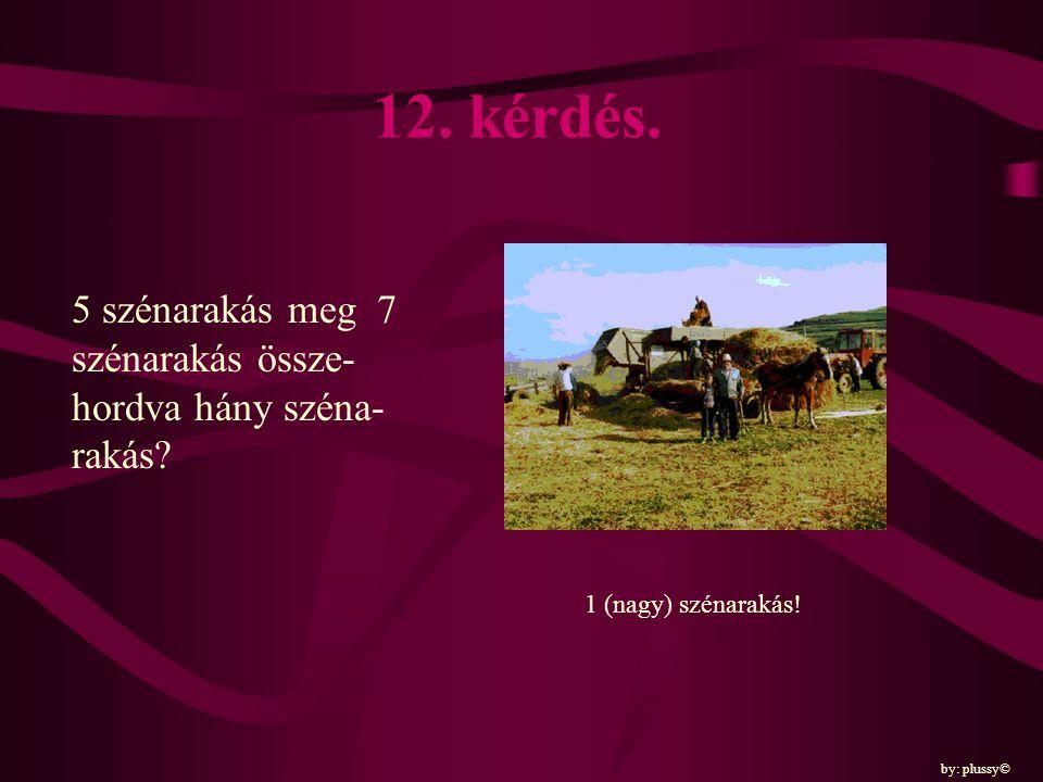 12. kérdés. 5 szénarakás meg 7 szénarakás össze-hordva hány széna-rakás.