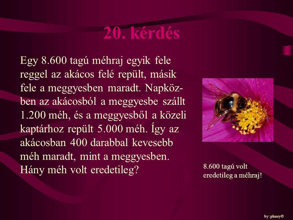 20. kérdés