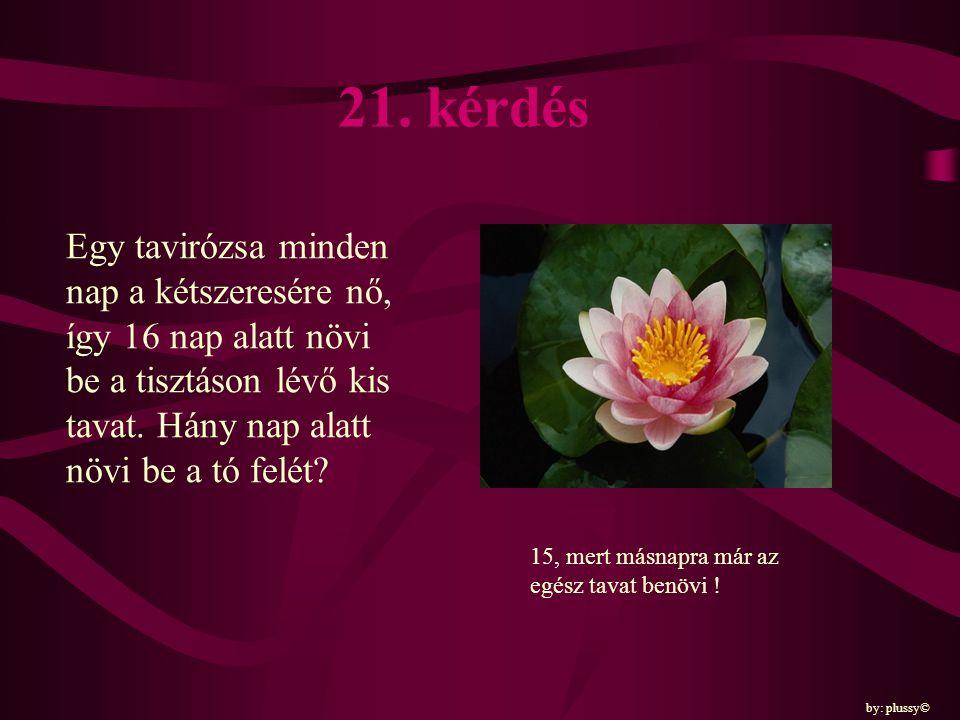 21. kérdés Egy tavirózsa minden nap a kétszeresére nő, így 16 nap alatt növi be a tisztáson lévő kis tavat. Hány nap alatt növi be a tó felét