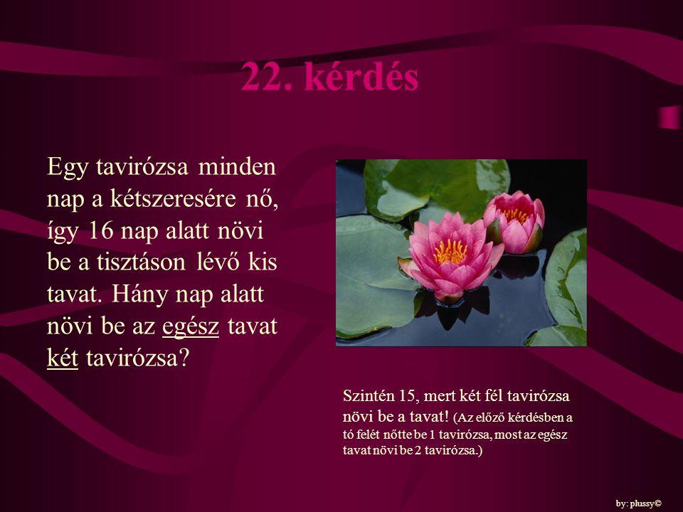 22. kérdés