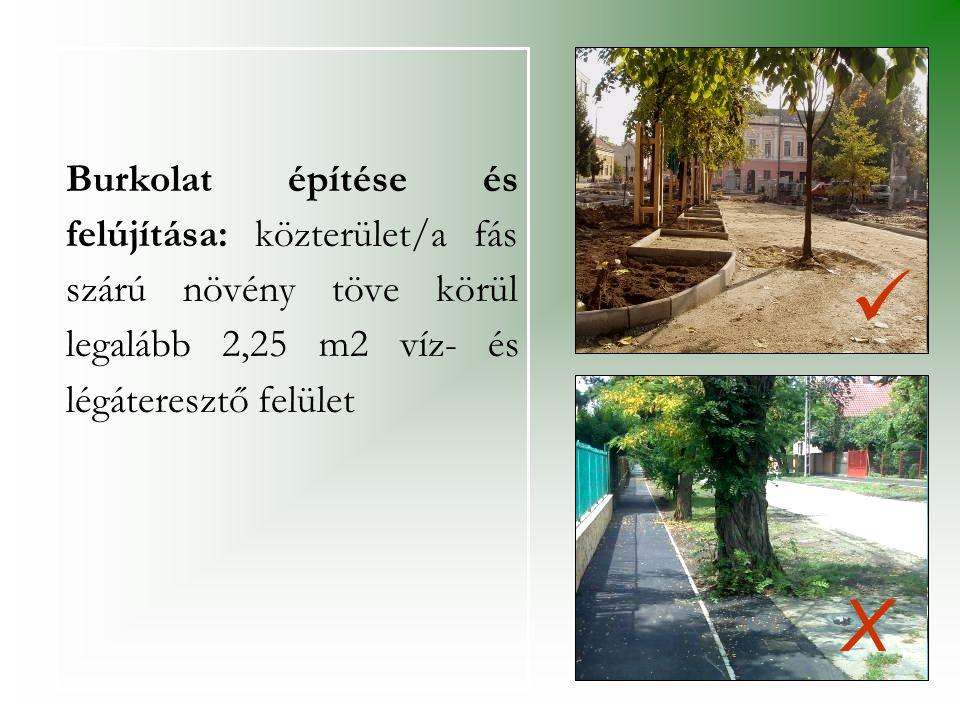 Burkolat építése és felújítása: közterület/a fás szárú növény töve körül legalább 2,25 m2 víz- és légáteresztő felület
