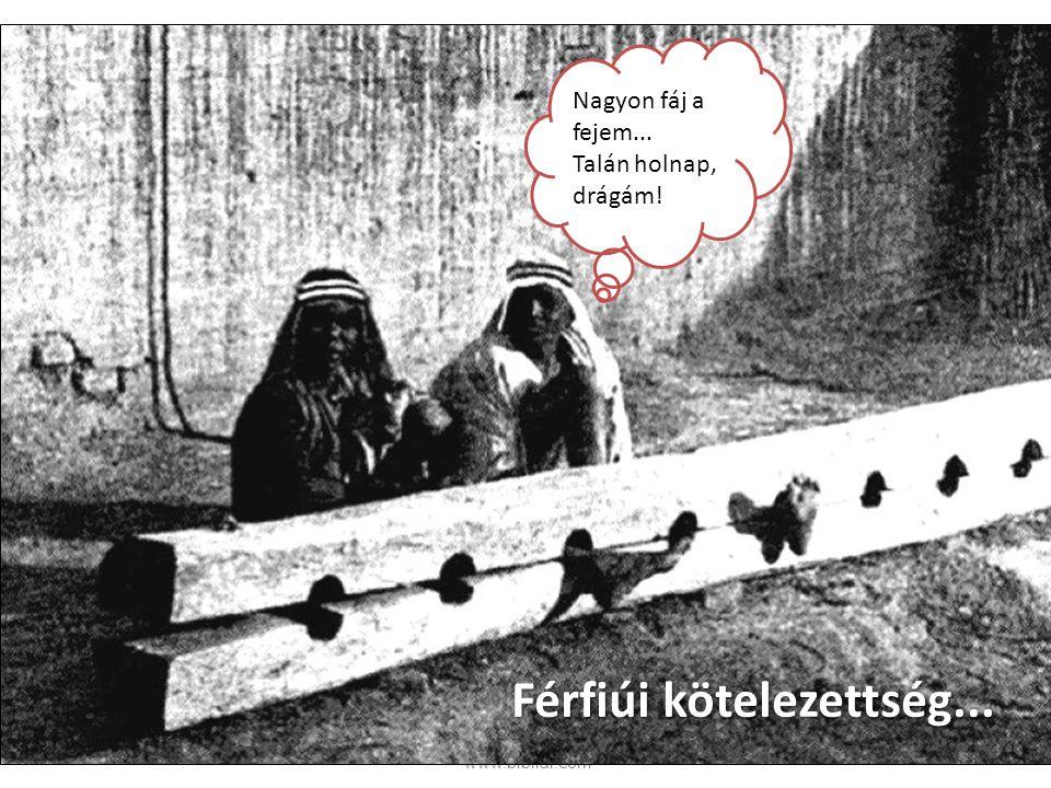 © Brouwer Pálhegyi Krisztina ∙www.bibliai.com