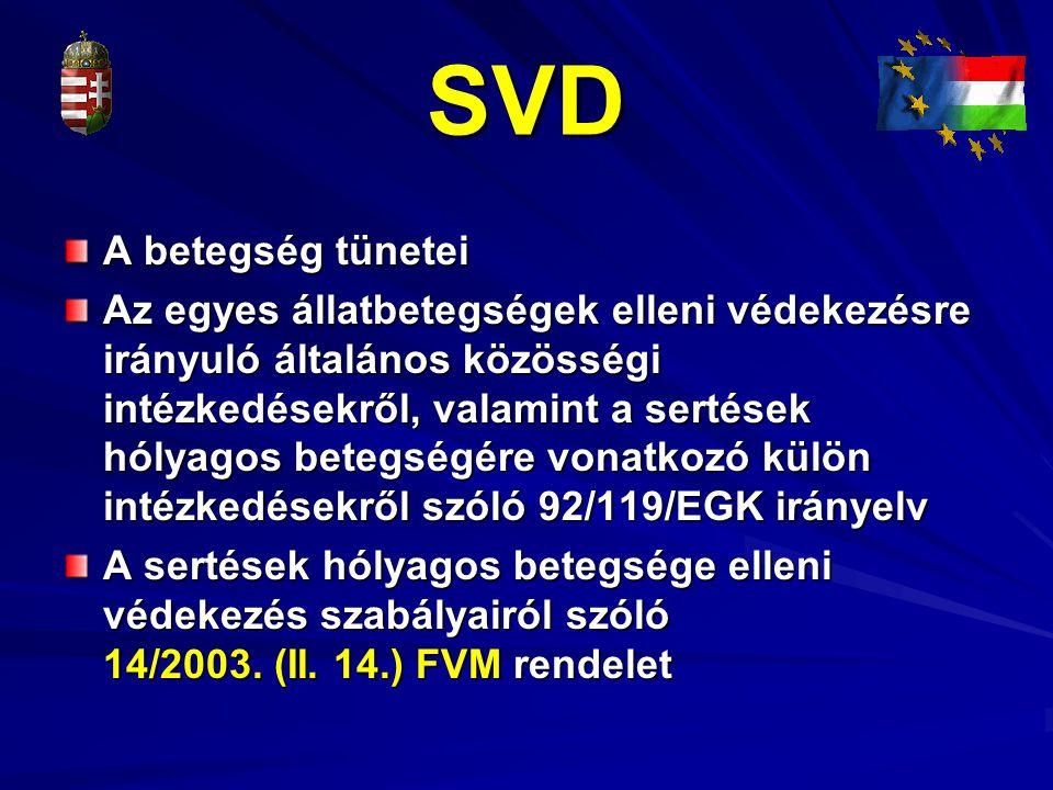 SVD A betegség tünetei.