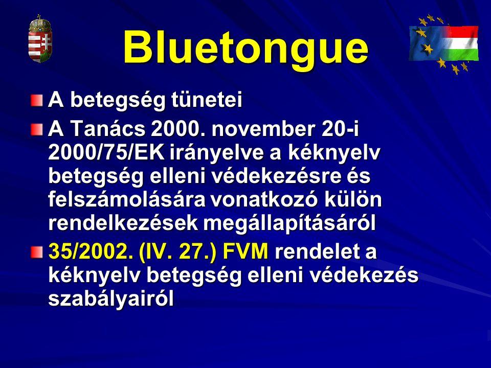 Bluetongue A betegség tünetei