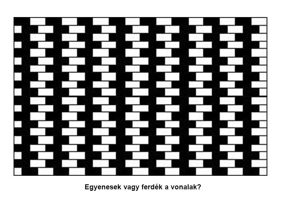 Egyenesek vagy ferdék a vonalak