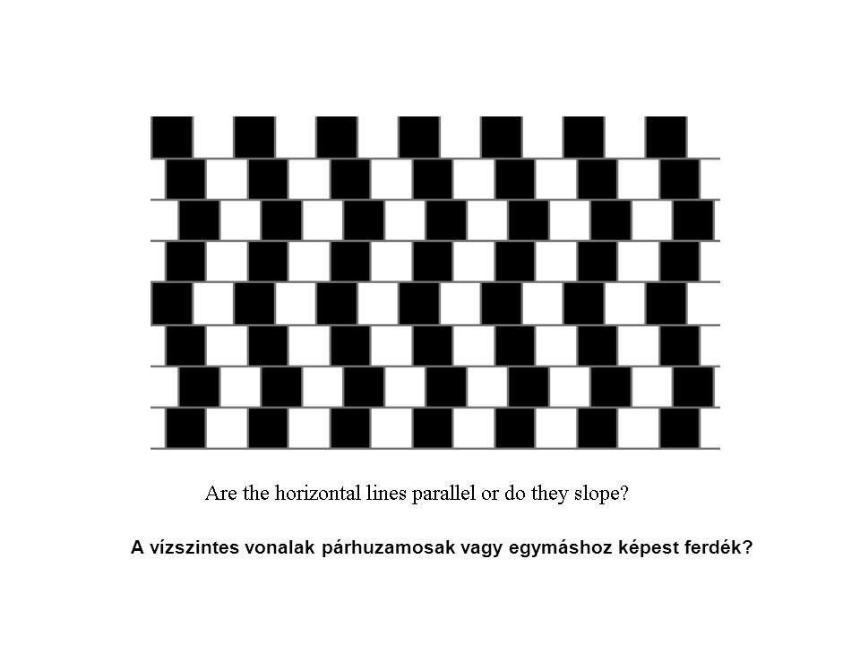 A vízszintes vonalak párhuzamosak vagy egymáshoz képest ferdék