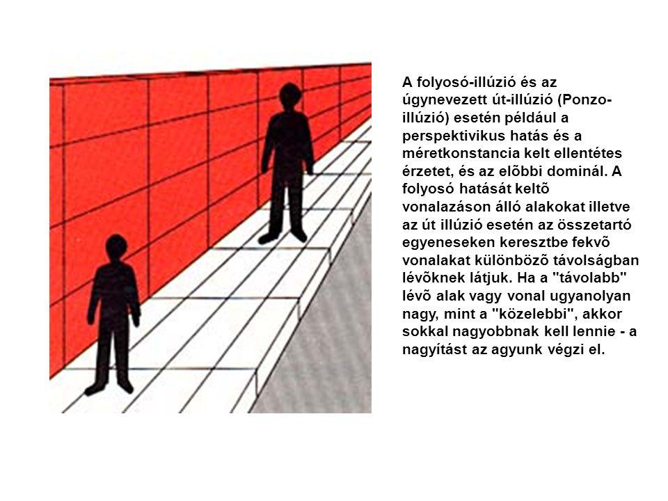 A folyosó-illúzió és az úgynevezett út-illúzió (Ponzo-illúzió) esetén például a perspektivikus hatás és a méretkonstancia kelt ellentétes érzetet, és az elõbbi dominál.