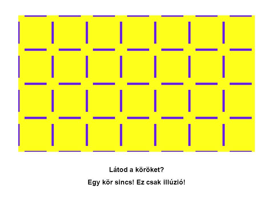 Egy kör sincs! Ez csak illúzió!
