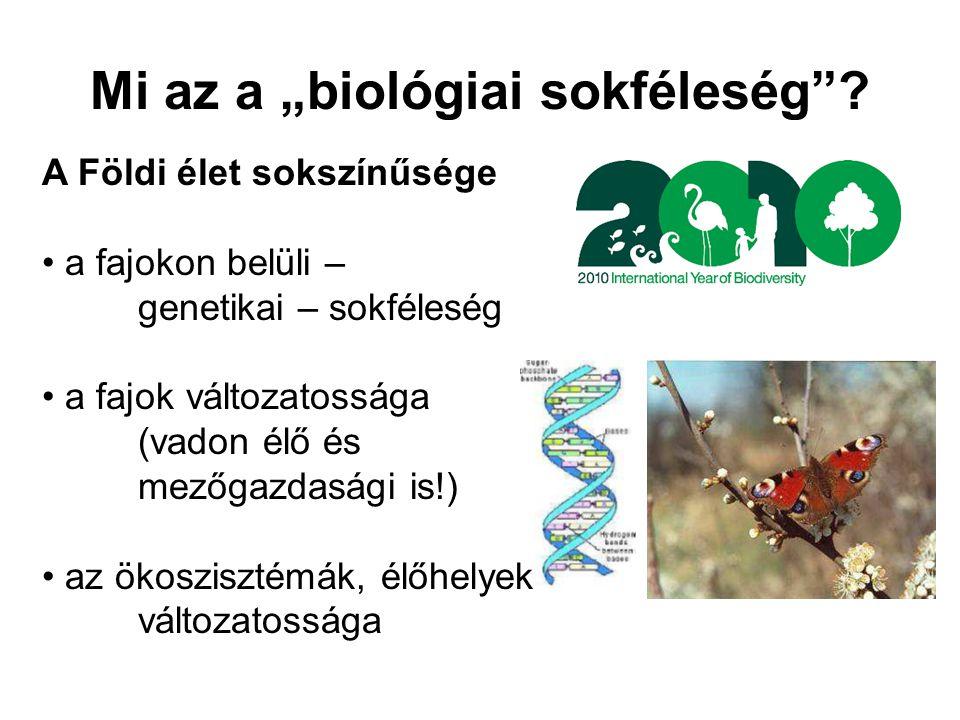 """Mi az a """"biológiai sokféleség"""