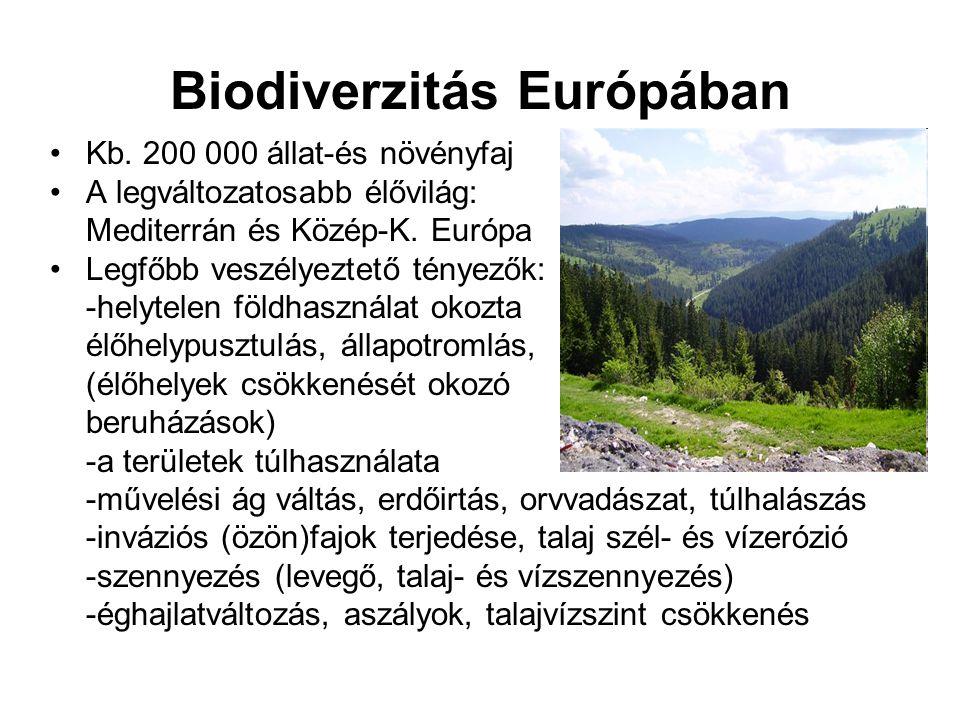 Biodiverzitás Európában