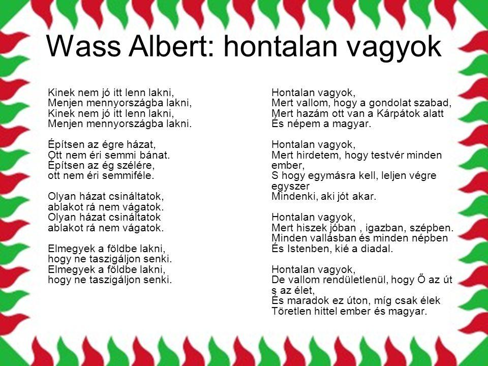 Wass Albert: hontalan vagyok