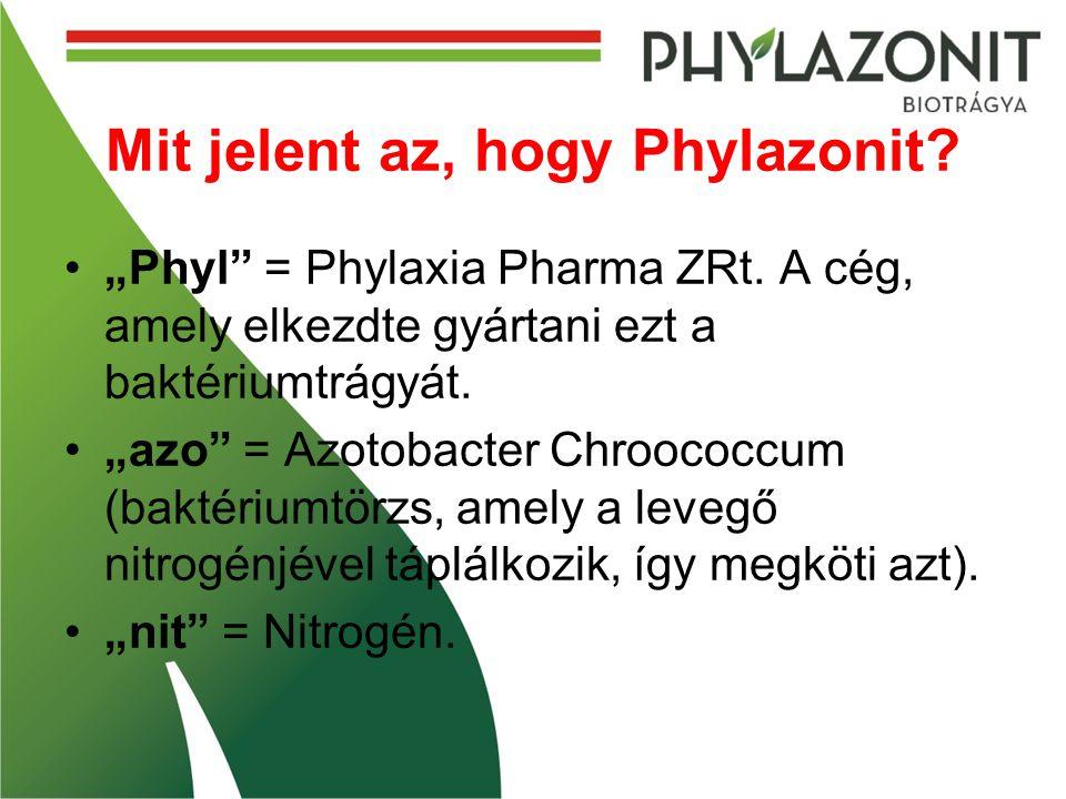 Mit jelent az, hogy Phylazonit