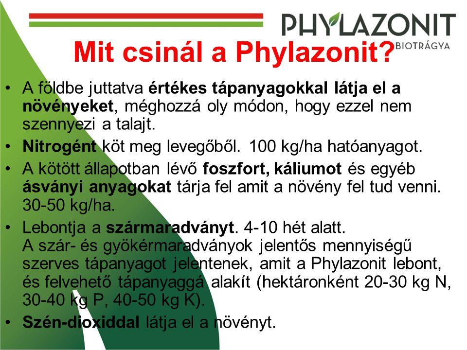 Mit csinál a Phylazonit