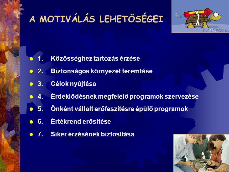 A MOTIVÁLÁS LEHETŐSÉGEI