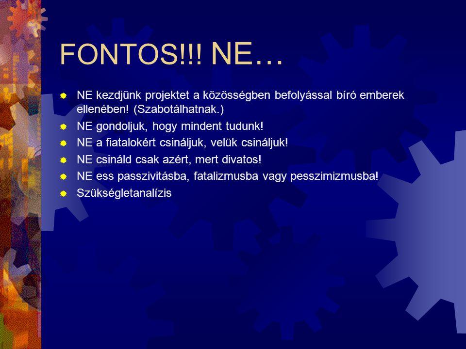 FONTOS!!! NE… NE kezdjünk projektet a közösségben befolyással bíró emberek ellenében! (Szabotálhatnak.)