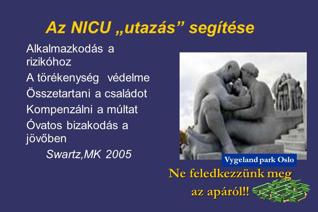 """Az NICU """"utazás segítése"""