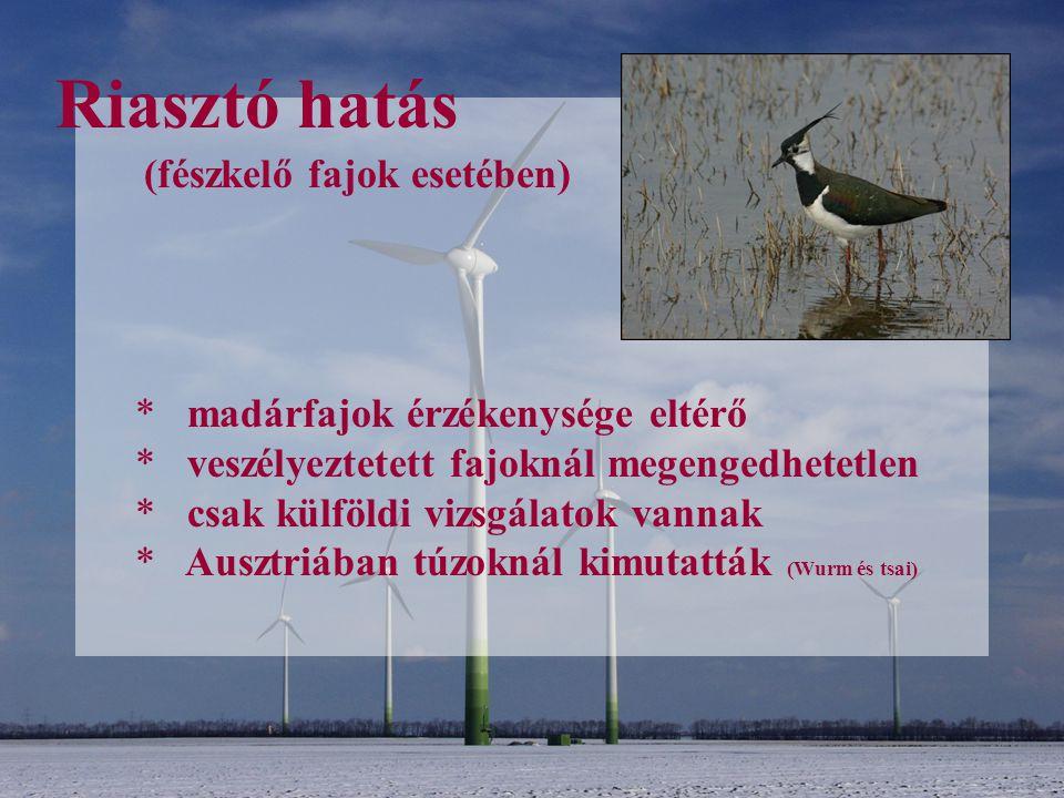 Riasztó hatás (fészkelő fajok esetében) madárfajok érzékenysége eltérő
