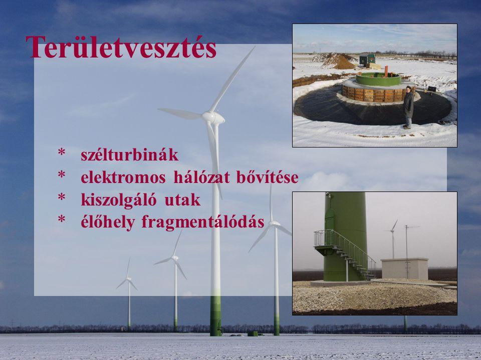 Területvesztés szélturbinák elektromos hálózat bővítése