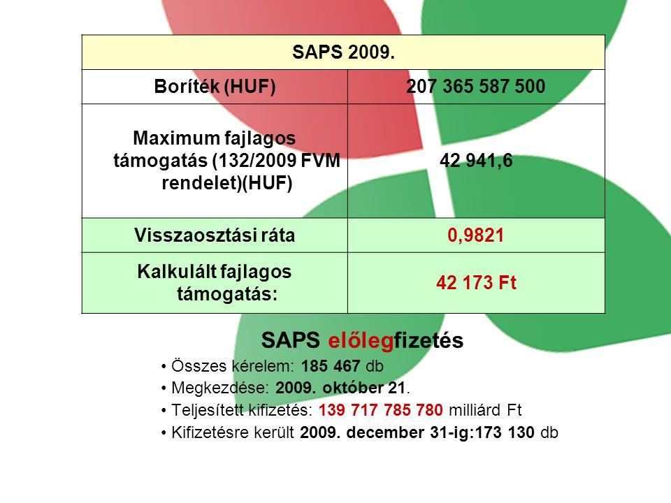 SAPS előlegfizetés SAPS 2009. Boríték (HUF) 207 365 587 500