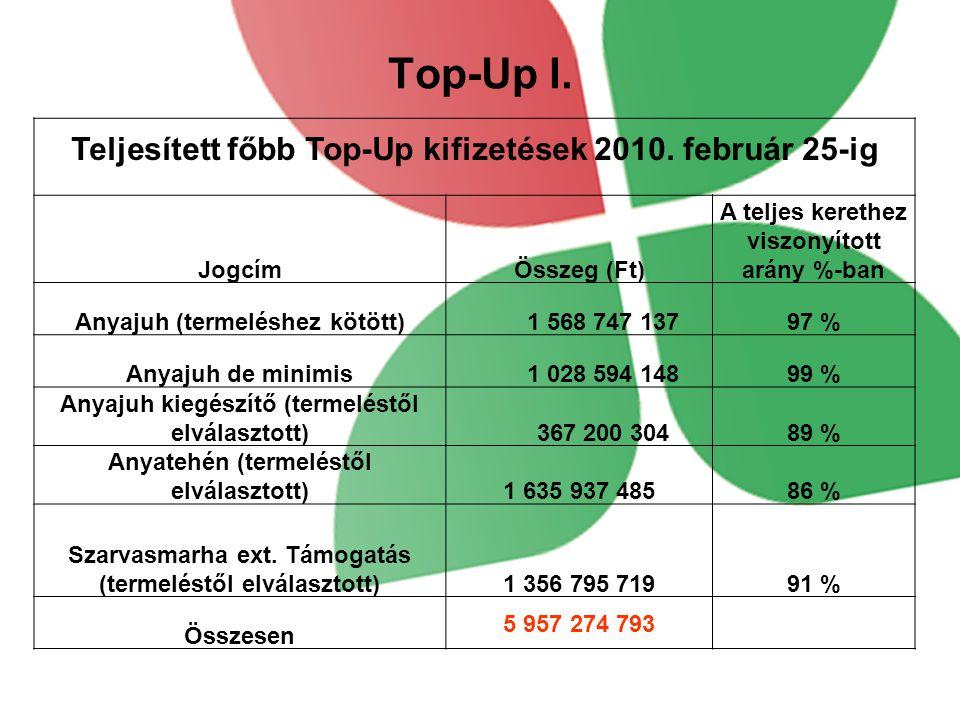 Top-Up I. Teljesített főbb Top-Up kifizetések 2010. február 25-ig