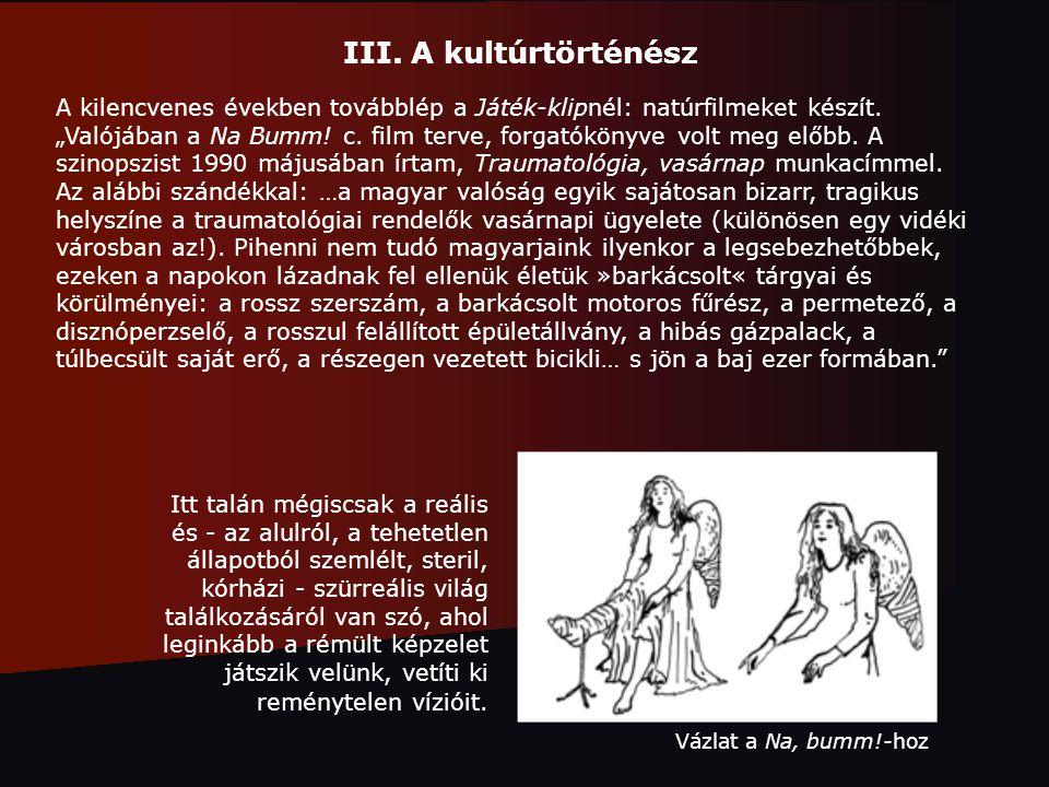 III. A kultúrtörténész A kilencvenes években továbblép a Játék-klipnél: natúrfilmeket készít.