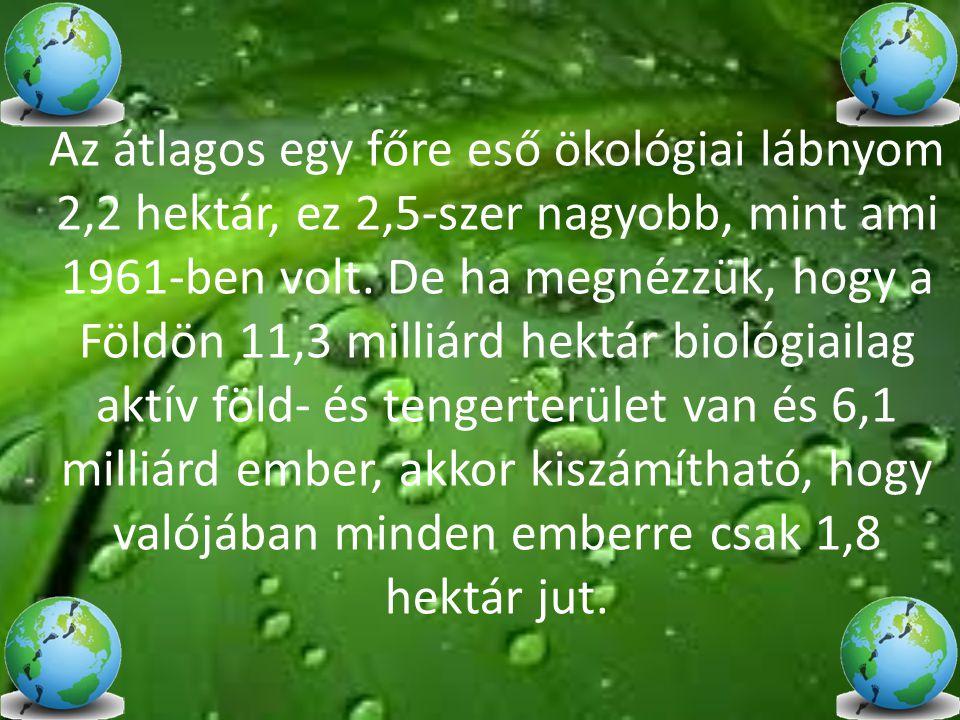Az átlagos egy főre eső ökológiai lábnyom 2,2 hektár, ez 2,5-szer nagyobb, mint ami 1961-ben volt.