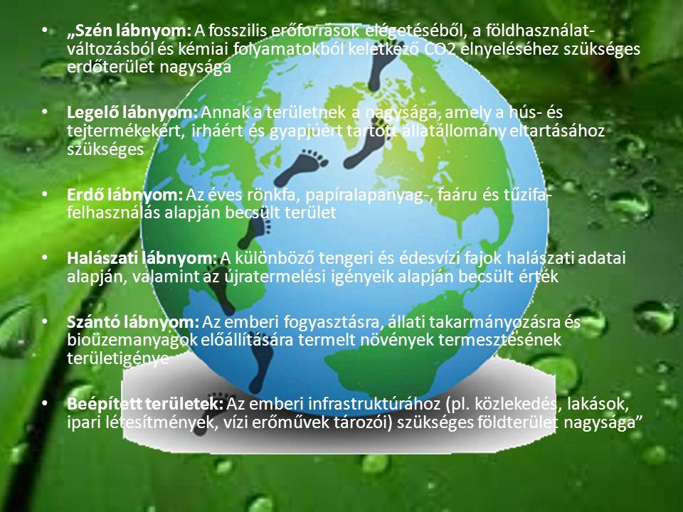 """""""Szén lábnyom: A fosszilis erőforrások elégetéséből, a földhasználat-változásból és kémiai folyamatokból keletkező CO2 elnyeléséhez szükséges erdőterület nagysága"""