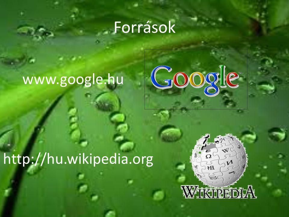 Források www.google.hu http://hu.wikipedia.org