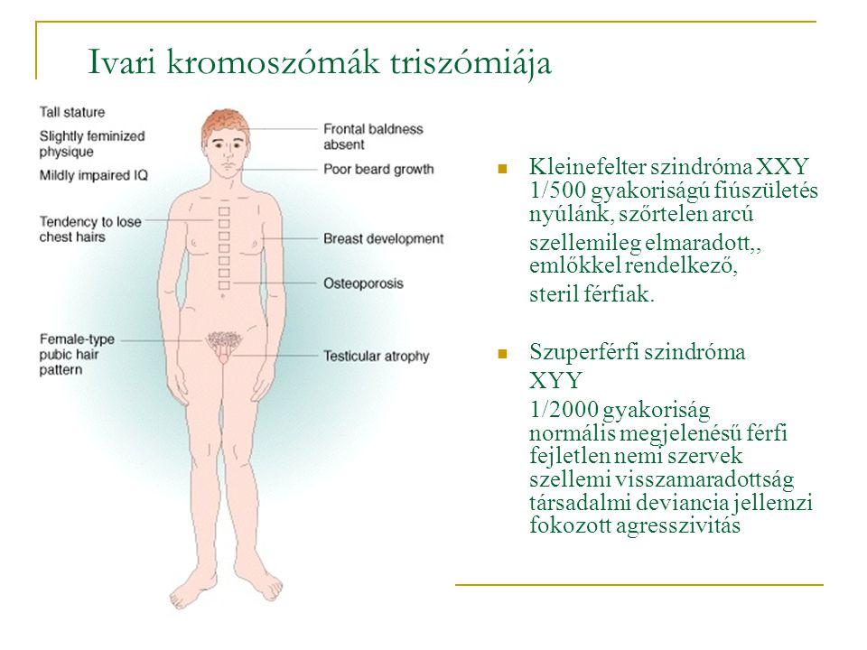 Ivari kromoszómák triszómiája