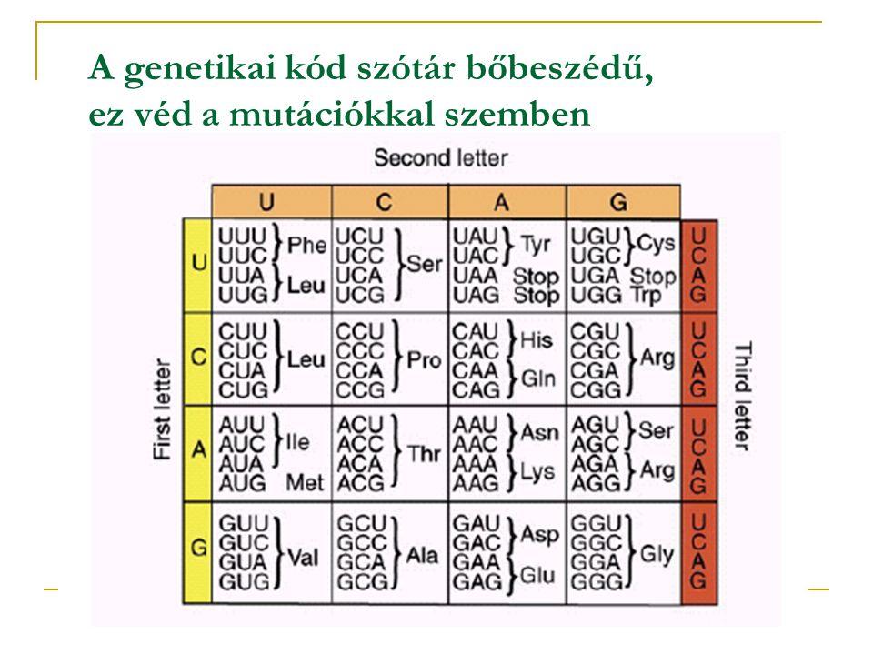 A genetikai kód szótár bőbeszédű, ez véd a mutációkkal szemben