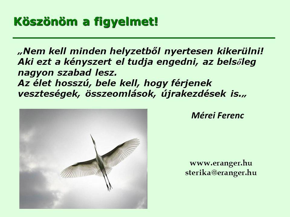 Köszönöm a figyelmet! Mérei Ferenc