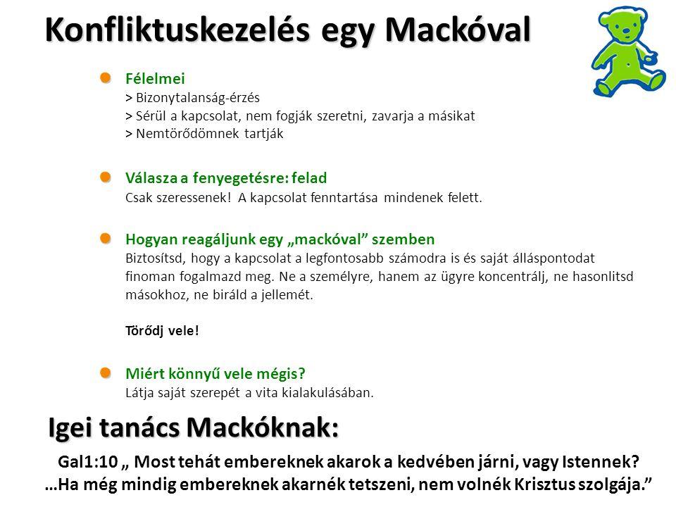 Konfliktuskezelés egy Mackóval