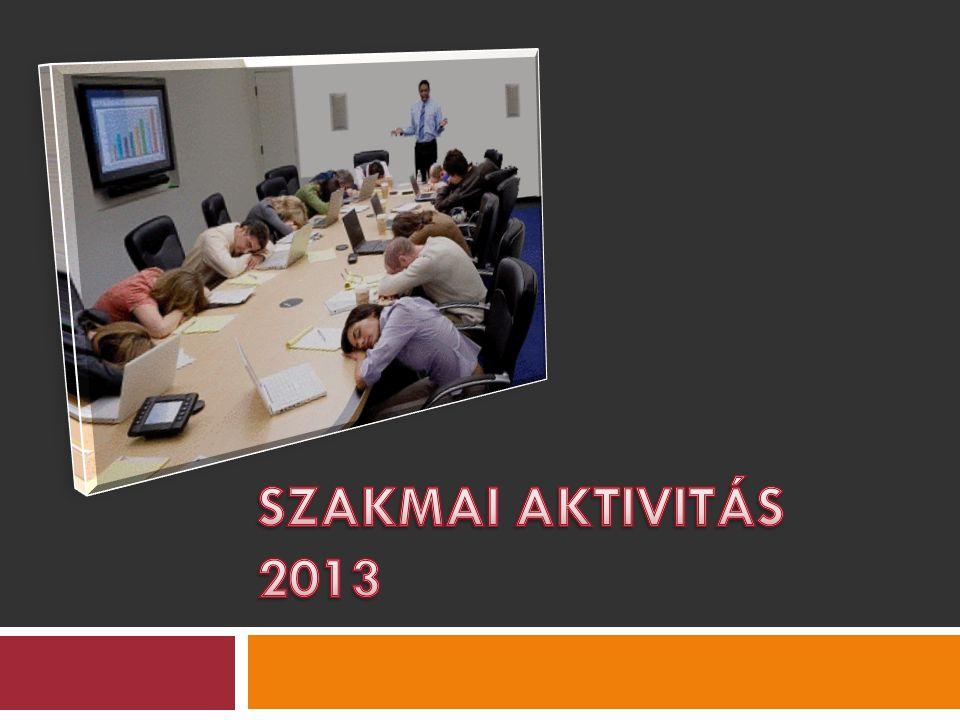 SZAKMAI AKTIVITÁS 2013