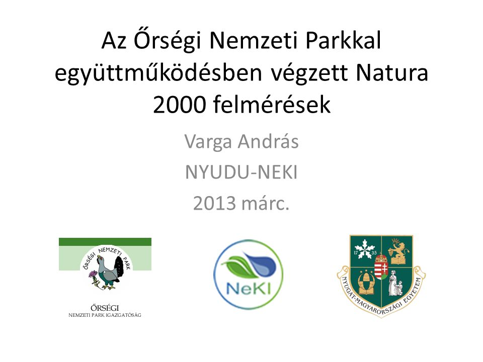 Varga András NYUDU-NEKI 2013 márc.