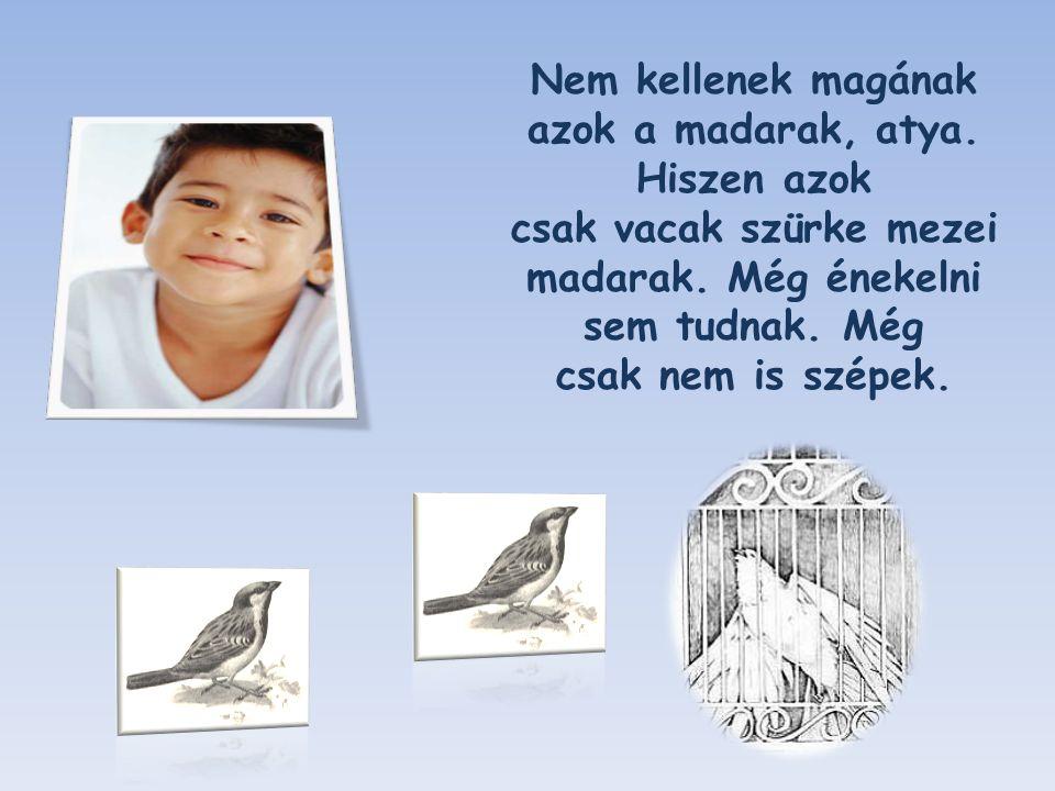 Nem kellenek magának azok a madarak, atya